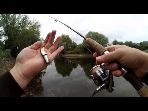 Рыбалка на щуку в жабовнике