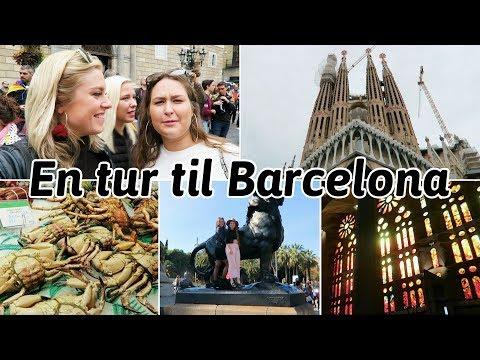 Barcelona med 3.b 🇪🇺