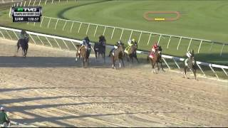 RACE REPLAY: 2017 Tampa Bay Derby Featuring Tapwrit