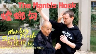 A Breakdown of the Mantis Hook with Zhou Then Dong