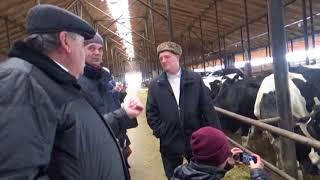 Содержание животных и система навозоудаления на ферме. Приготовление органического удобрения
