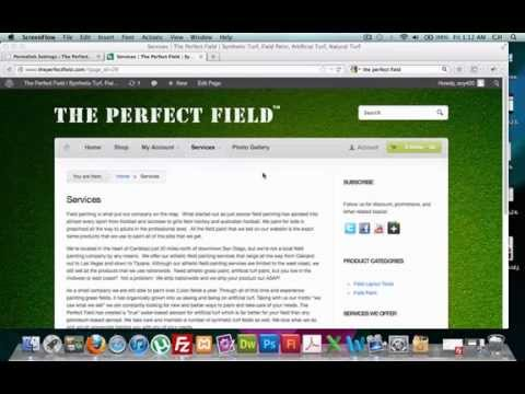 How to change Wordpress Permalinks (Best Video)