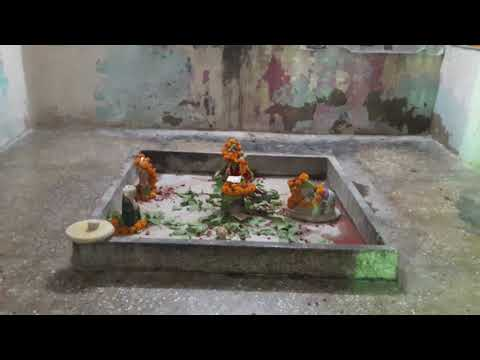 Maa shree yade Musical group(5)