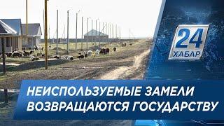Больше 1 млн га неиспользуемых земель выявили в ЗКО