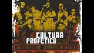 2-Buffalo Soldier (Tributo a Bob Marley en vivo) Cultura profetica.avi