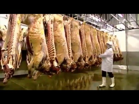 BBC Documentary - Britain's Really Disgusting Food Episode One Meat - Full Documentary Films