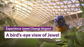 A Bird's-eye View of Jewel Changi Airport