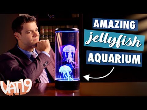 Large Jellyfish Lamp With Lots Of Colooors