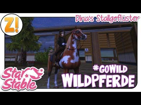 Star Stable [SSO]: #GoWild - Sei ein Wildpferd in SSO - OHNE Bug [DSG] #48 | Let's Play [DEUTSCH]