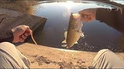 Yuma AZ Canal Fishing For Bass