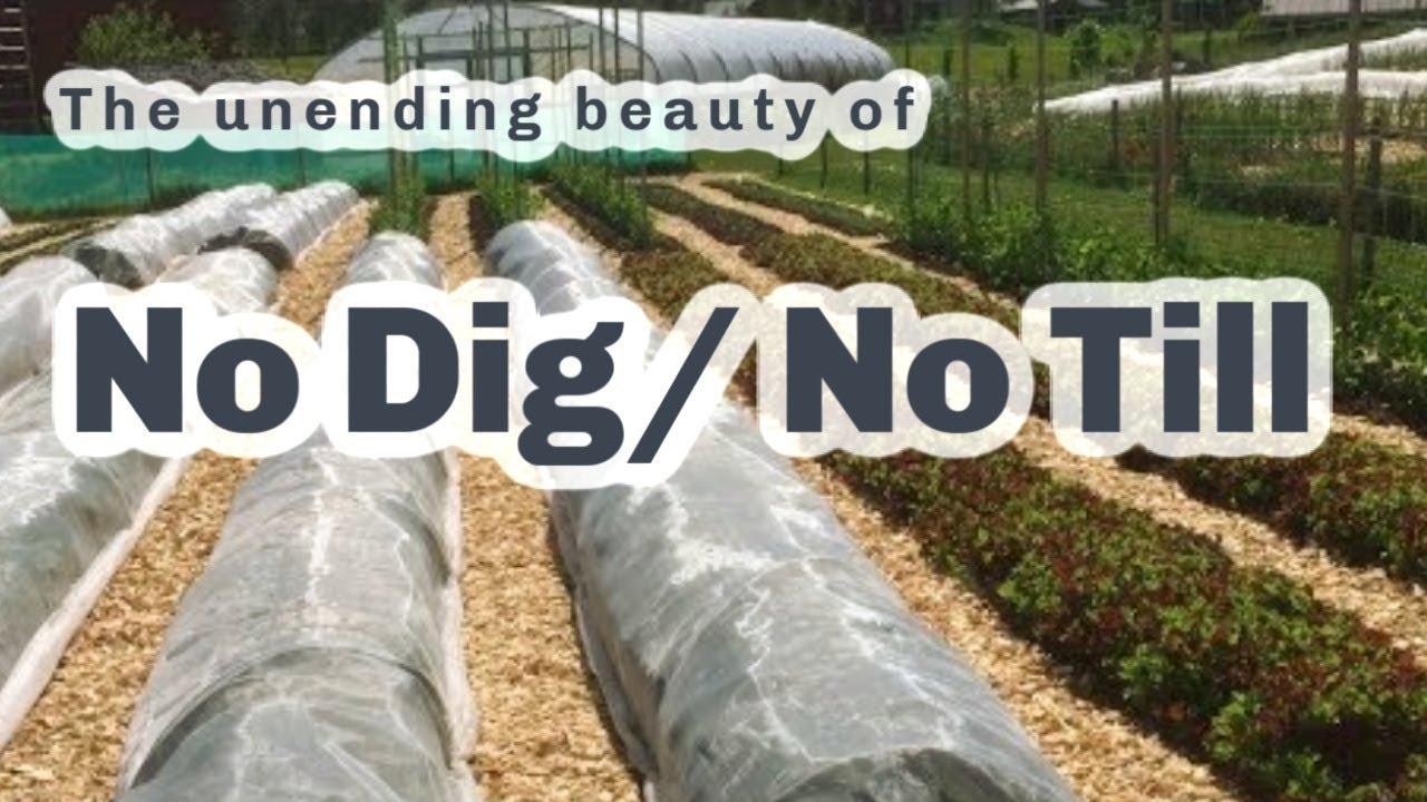 S4 ○ E57 No Dig Market Gardens and farm update - YouTube