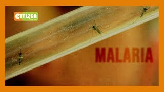 Malaria kills 3 people in Elgeiyo Marakwet County
