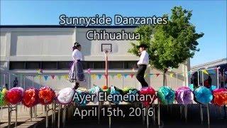 Sunnyside Danzantes - Chihuahua