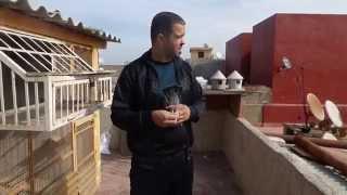 ismail b lhawari mustapaha pigeons voyageurs le vendredi  25 10 2013