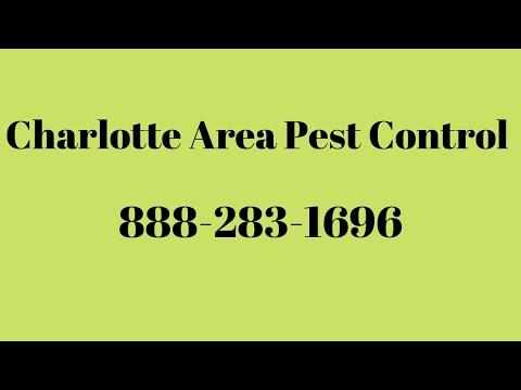 Pest Control Charlotte NC - Видео онлайн