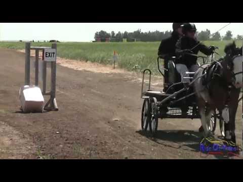 031M Jo Dee Howard Intermediate Single Pony Marathon WSS Vineyard Classic CDE May 2012
