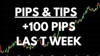 Pips & Tips +100 Pips Last Week Trading Forex