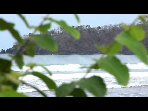 #Surfology - Guia de Surf Panamá - Spots + olas + hospedaje - Gravedad Zero Tv