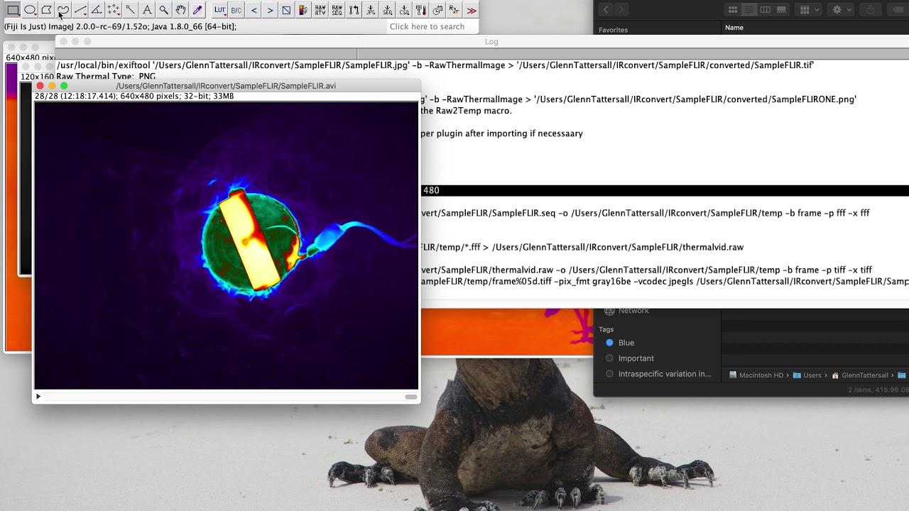 Coding | Tattersall Lab (T E M P )