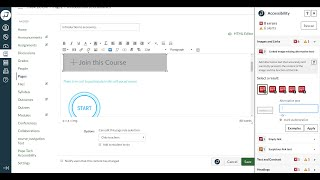 Instructor Accessibility Guide: Demo for Canvas LMS