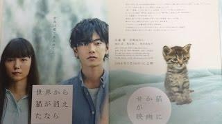 世界から猫が消えたなら 2016 映画チラシ 2016年5月14日公開 シェアOK ...