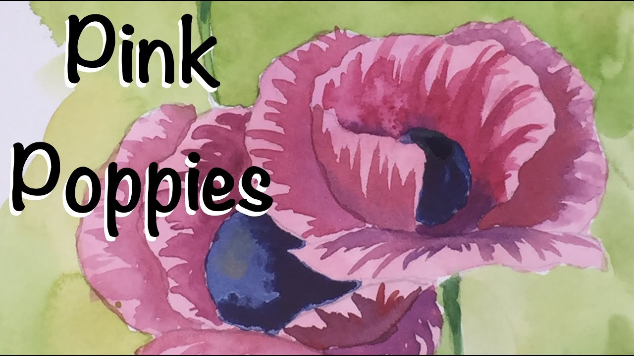 How To Paint Poppies In Watercolor Pink Flowers Poppy Watercolour