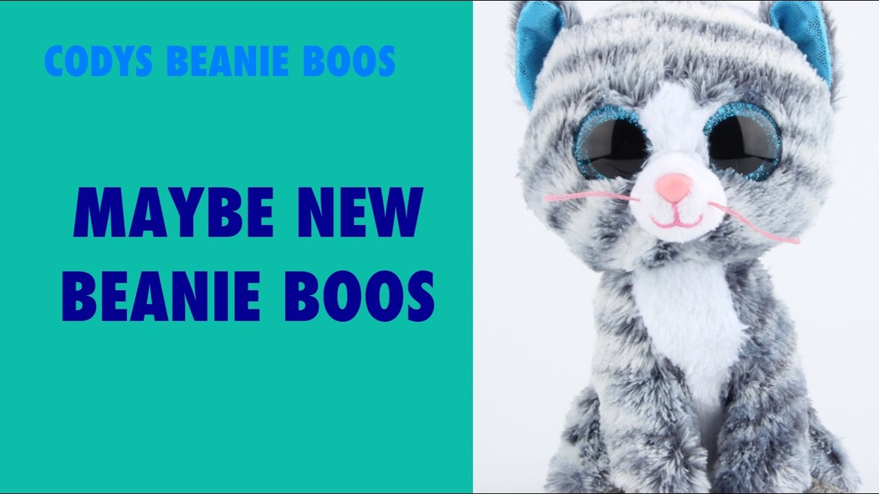 New Beanie Boos 'Maybe a new Alpine'   Cody's Beanie Boos - YouTube