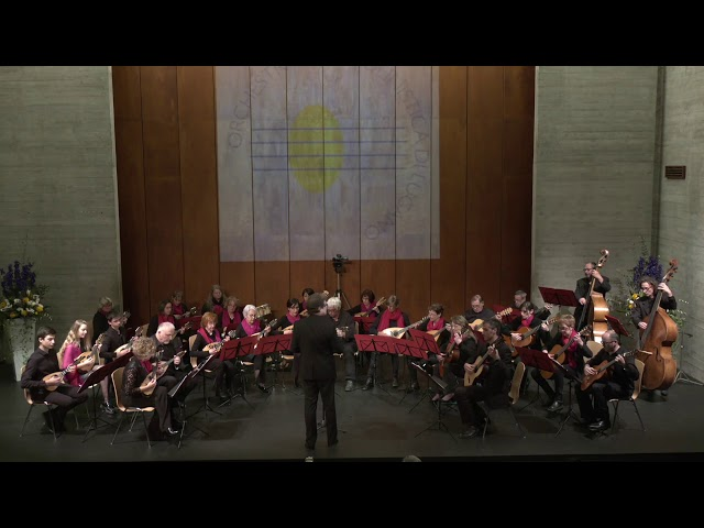 M. Pacchin - Swing Fit - Orchestra Mandolinistica di Lugano