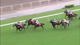 Vidéo de la course PMU JOCKEY CLUB MILE