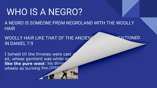NEGRO TRAITORS PART(VI)