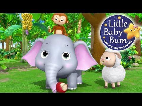 Yum Yum! Animals Feeding Song | Nursery Rhymes | Original Kids Songs By LittleBabyBum!