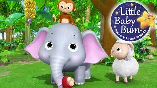 Learn with Little Baby Bum | Animals Feeding Song | Nursery Rhymes for Babies | Songs for Kids