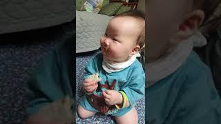 (D+266) 파랑이 아기상어 티셔츠입고서~~ 까까먹어…