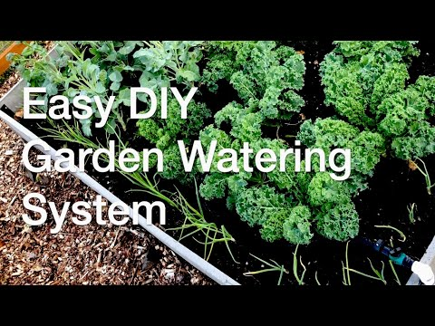 DIY Garden Watering System--Easy & Cheap | AnOregonCottage.com