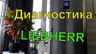 как выбрать БУ Холодильник??? / Диагностика Холодильника Liebherr  на Выезде