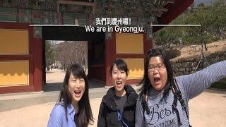 釜山福岡雙國遊首部曲之慶州一日遊!Busan Fukuoka Trip Part 2
