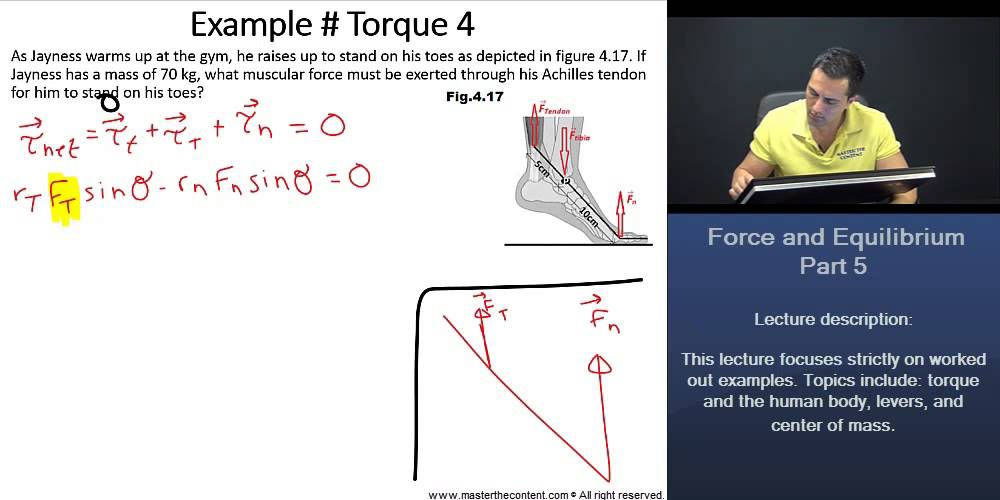 Video Mcat Physics Forces Equilibrium And Free Body Diagrams Video