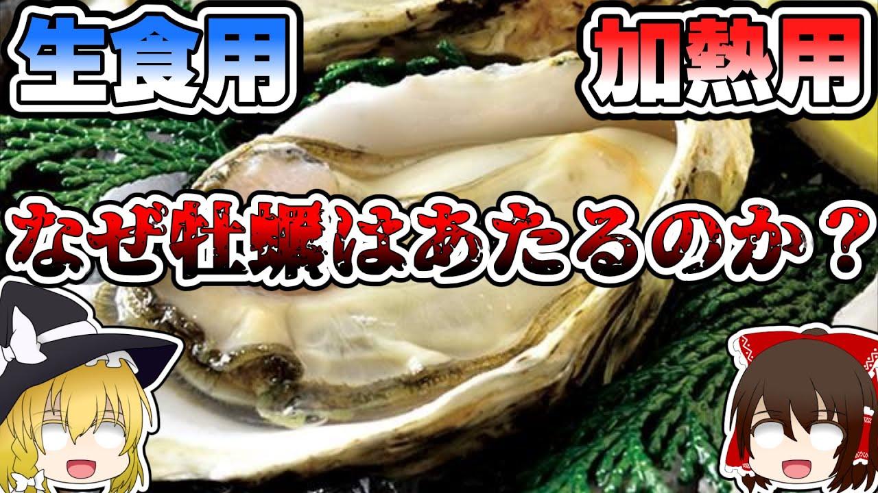 あたる 牡蠣