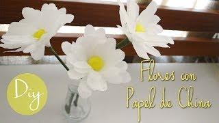 DIY: flores hechas con papel de china Thumbnail