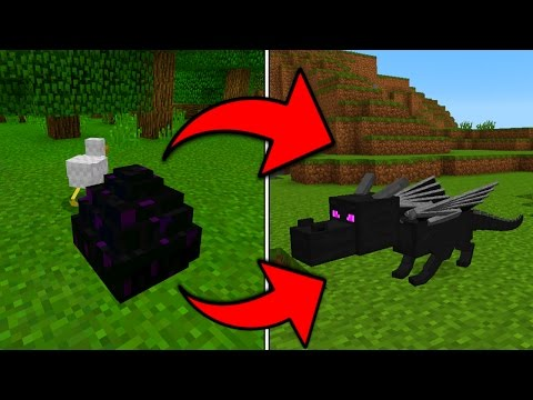 How To Hatch the Ender Dragon Egg in Minecraft Pocket Edition (1.0+)