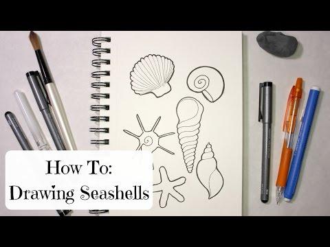 HOW TO: DRAWING SEASHELLS