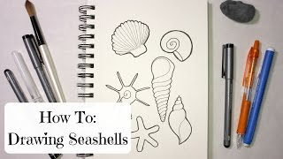 HOW TO: DRAWING SEASHELLS
