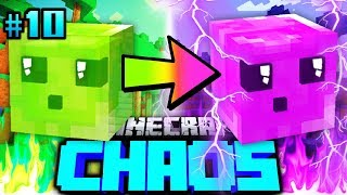 SLIMY hat EINE NEUE EVOLUTION?! - Minecraft CHAOS #10 [Deutsch/HD]