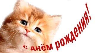 С днем рождения! Милое #поздравление ребенку от котенка Мультяшные поздравления