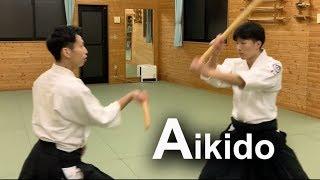 Aikido : Dynamic Smooth Technical - Shirakawa Ryuji shihan