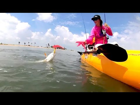 Redfish & Trout On Topwater