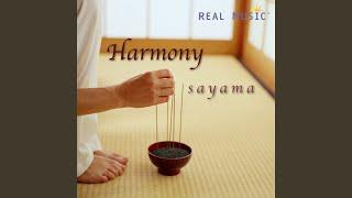 Play Stream of Stillness