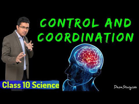 Control and Coordination : CBSE Class 10 X Science (Biology) thumbnail