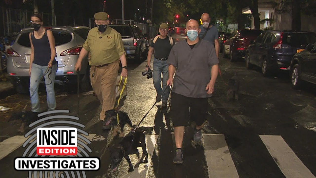Dog Show Judge Moonlights as a Rat Hunter