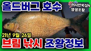 러시안피싱4│210926 올드버그 호수 브림낚시 조황정…